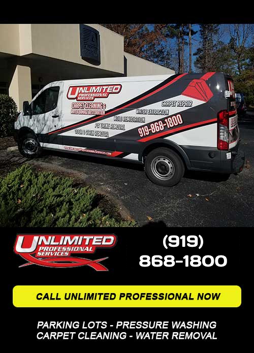 Call Unlimited Professional Services NOW